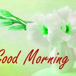 342+ Gud Morning Images Photo HD Download