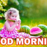245+ Gud Mrng Images Wallpaper Pics Photo HD Download