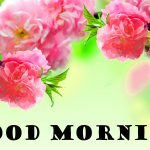 326+ Latest Good Morning Images Wallpaper Pictures for Facebook