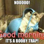 Funny Good Morning Images Wallpaper Pics For Girlfriend-178+ फनी मॉर्निंग पिक्स