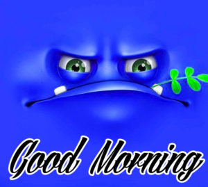 Funny Good Morning Images Pics Download