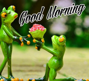 Funny Good Morning Images Wallpaper for Whatsapp
