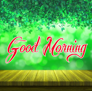 Nature Good Morning Images Pics free Download