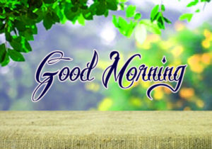 Nature Good Morning Images Photo DOWNLOAD