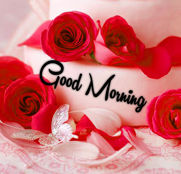 Very Nice Special Good Morning Photo Download