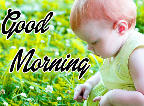 Good Morning Wishes Pics Free Download