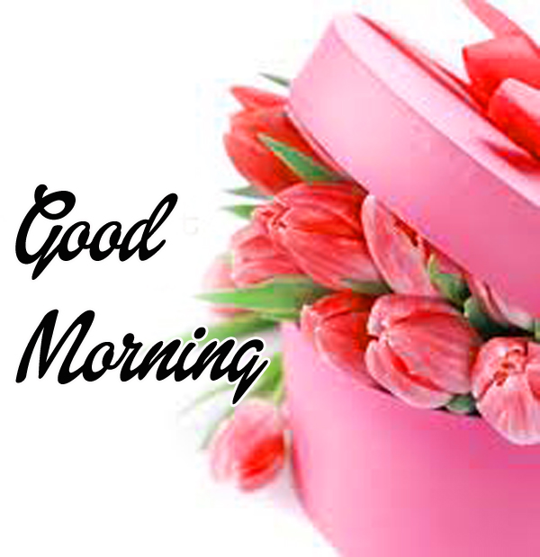 Good Morning Wishes Pics for Whatsapp