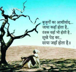 Motivational Quotes Hindi For Students Images Wallpaper for Whatsapp