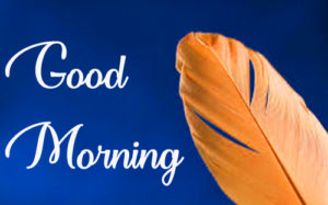 Wonderful Good Morning Pics Free Download