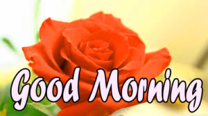 Wonderful Good Morning Pics Wallpaper Download