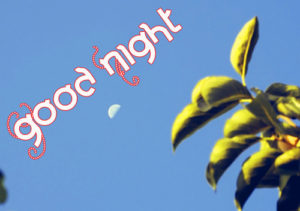 Good Night Pictures Images Wallpaper Download