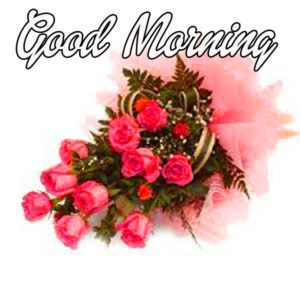 Special Good Morning Images Pics HD Download for Facebook