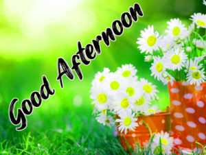 Good Afternoon Images Pic Download