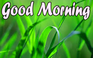 Good Morning Images Pics For Husband Photo Download