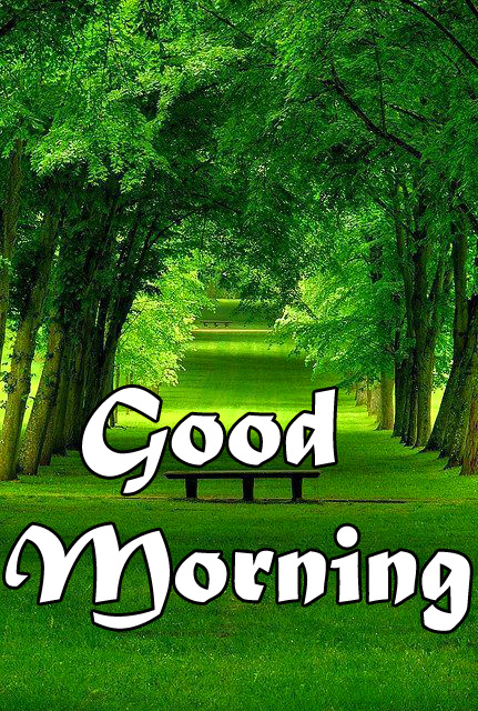 Nature-Good-Morning-Images-11