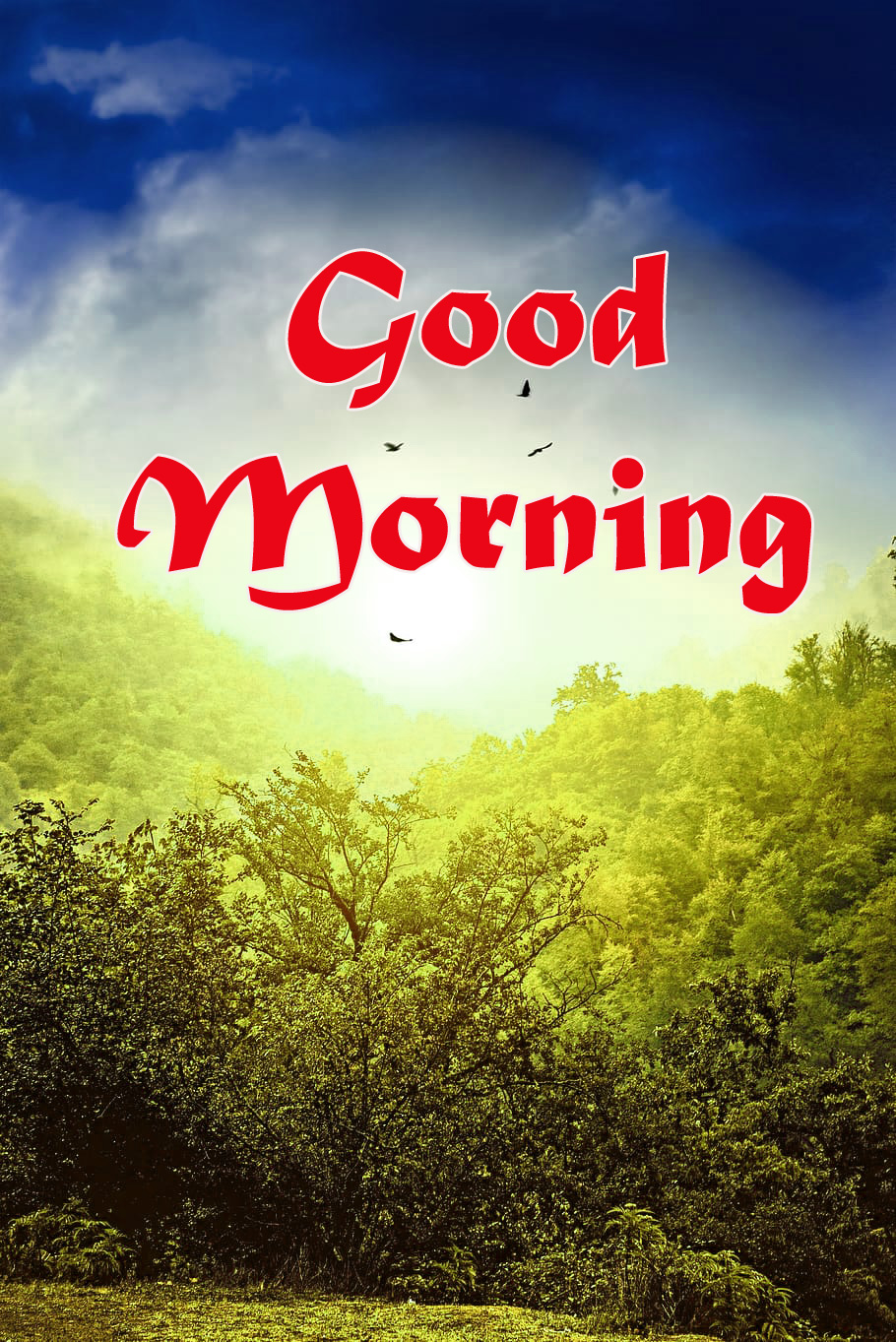 Nature-Good-Morning-Images-2