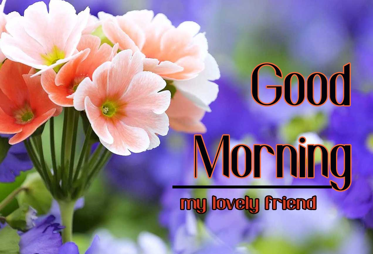Good Morning Friends Wallpaper With Flower