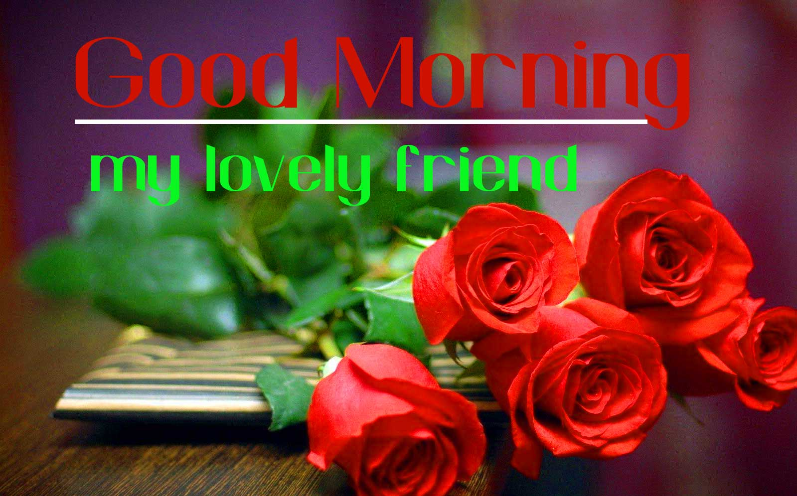 Red Rose Good Morning Friends Images