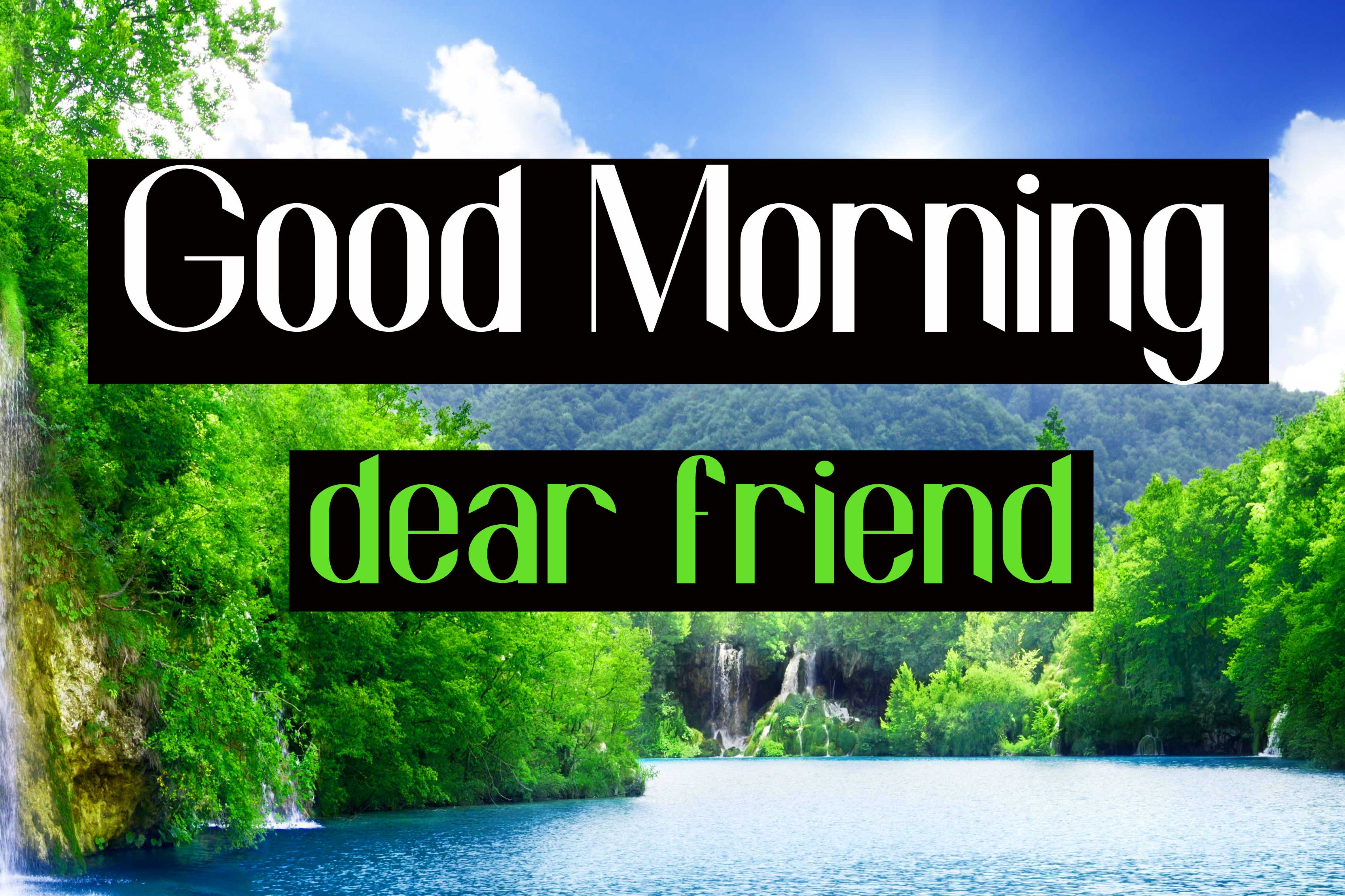 Nature Good Morning Friends Images