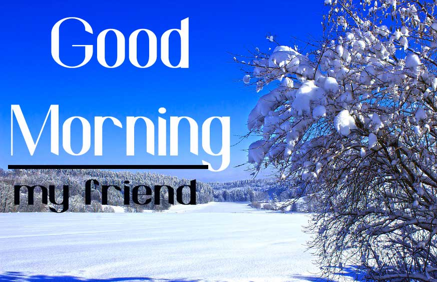Nature Free Good Morning Friends Images Download