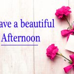235+ Beautiful Good Afternoon Images HD With Love Flower Nature
