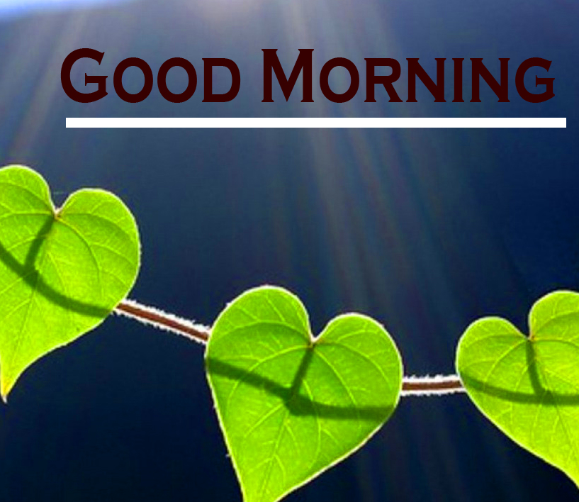 Good Morning Images pictures download for faceboook