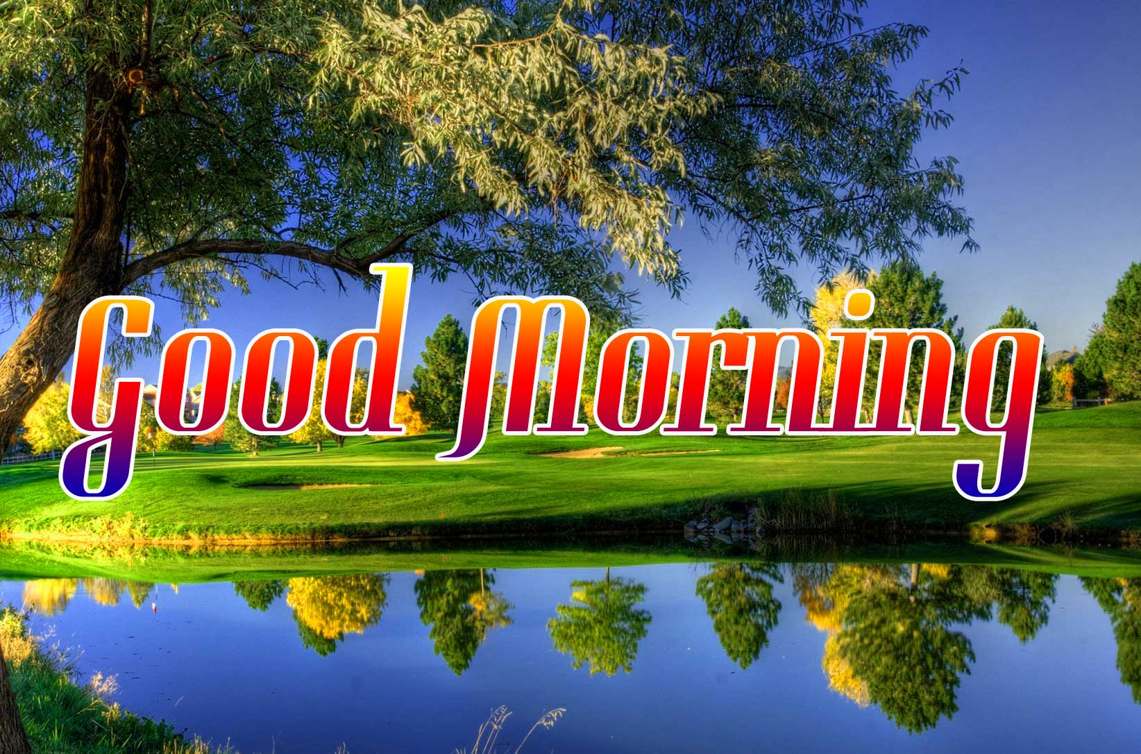 Nature Good Morning Pictures HD
