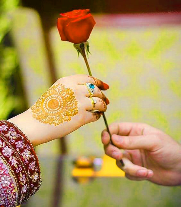Rose Free Sweet DP For Whatsapp Pics Images HD