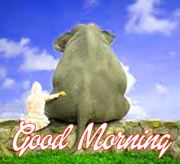 cute-good-morning-images-for-friend-hd
