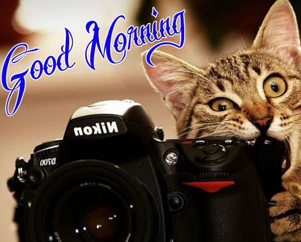 funny-good-morning-photo-for-cute-hd-download