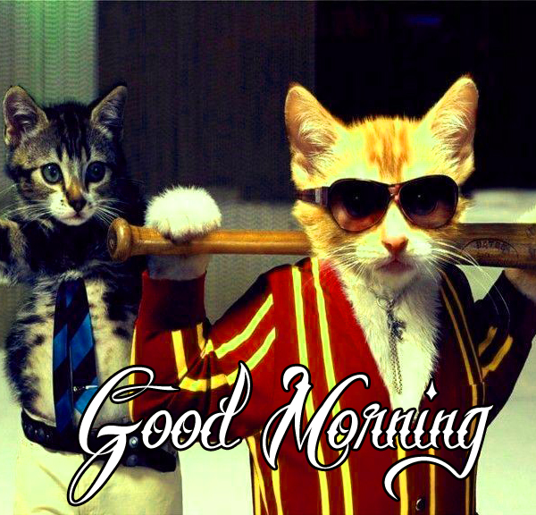 funny-good-morning-photo-for-love-hd