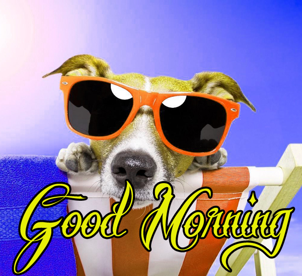 funny-good-morning-pics-for-facebook-hd-download
