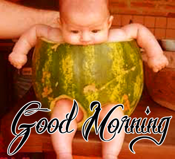 funny-good-morning-wallpaper-for-cute-hd