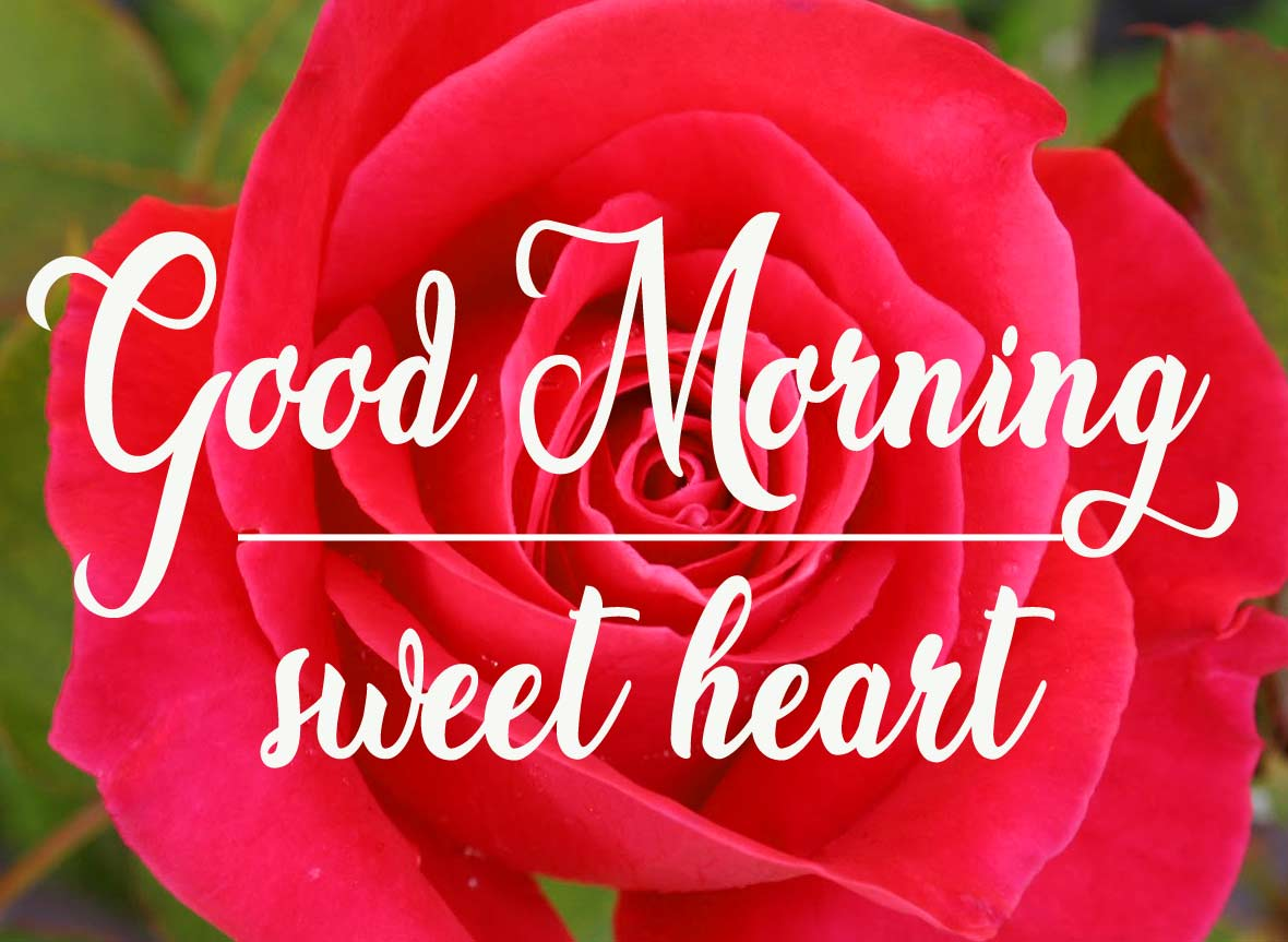 Happy good morning Photo Download