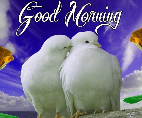 good-morning-kiss-picture-for-couple