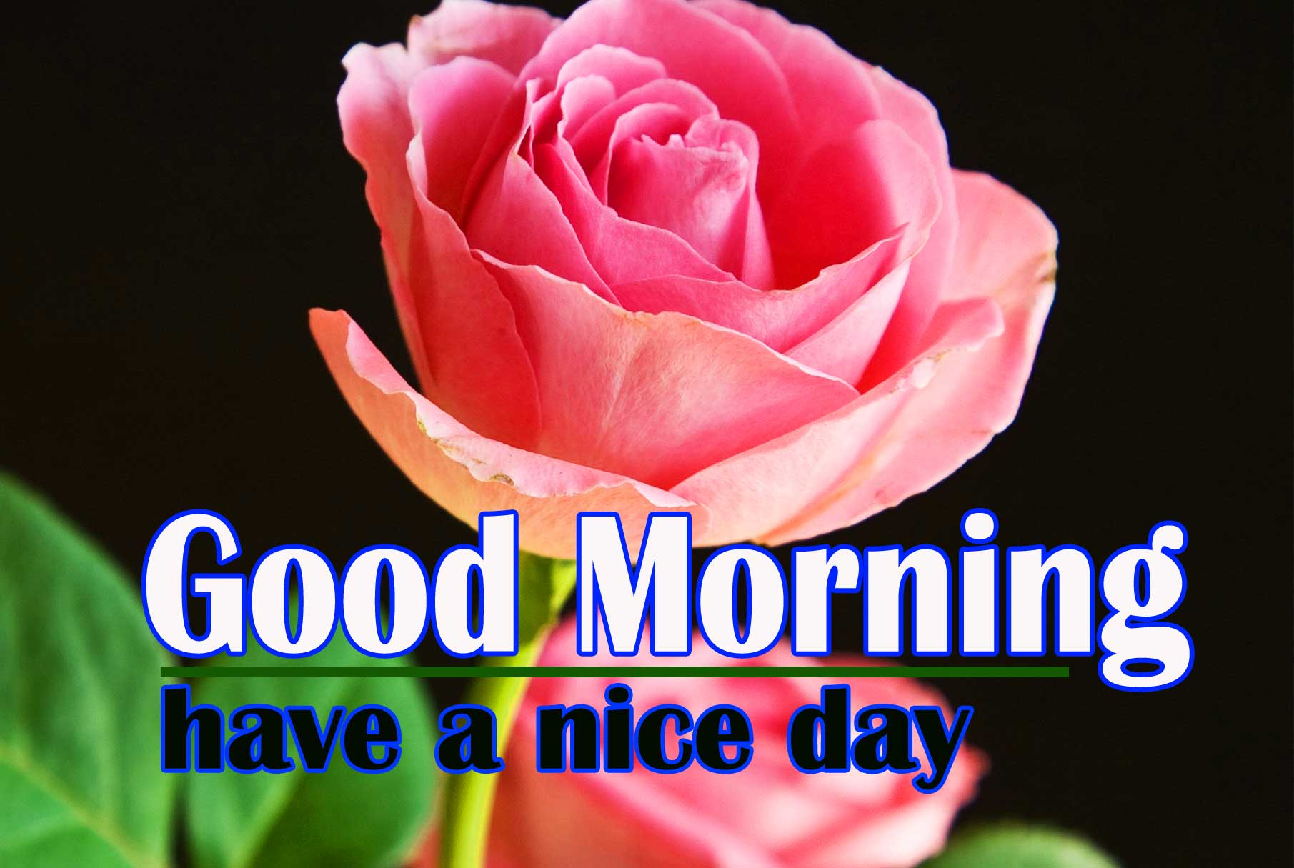 Special Good Morning Pics Free
