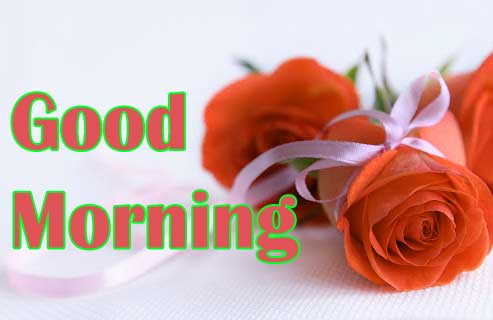 Rose Special Good Morning Pictures