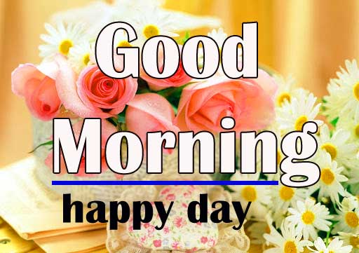 Flower Free Special Good Morning Pics