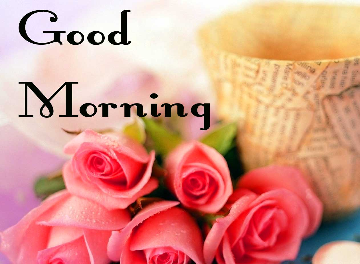 Rose Special Good Morning Pics