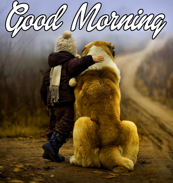 latest-cute-good-morning-images-for-friend