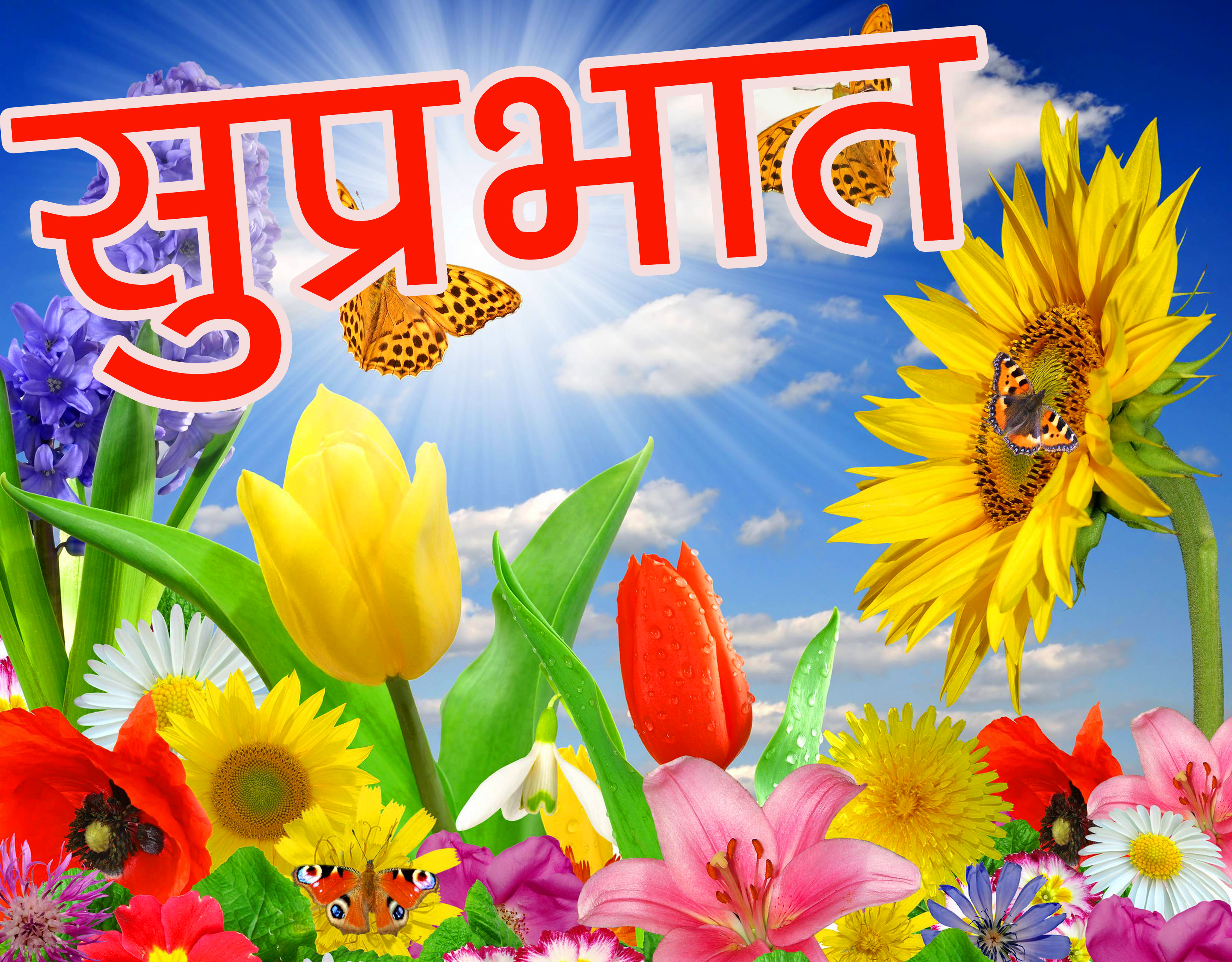 suprabhat-images-15
