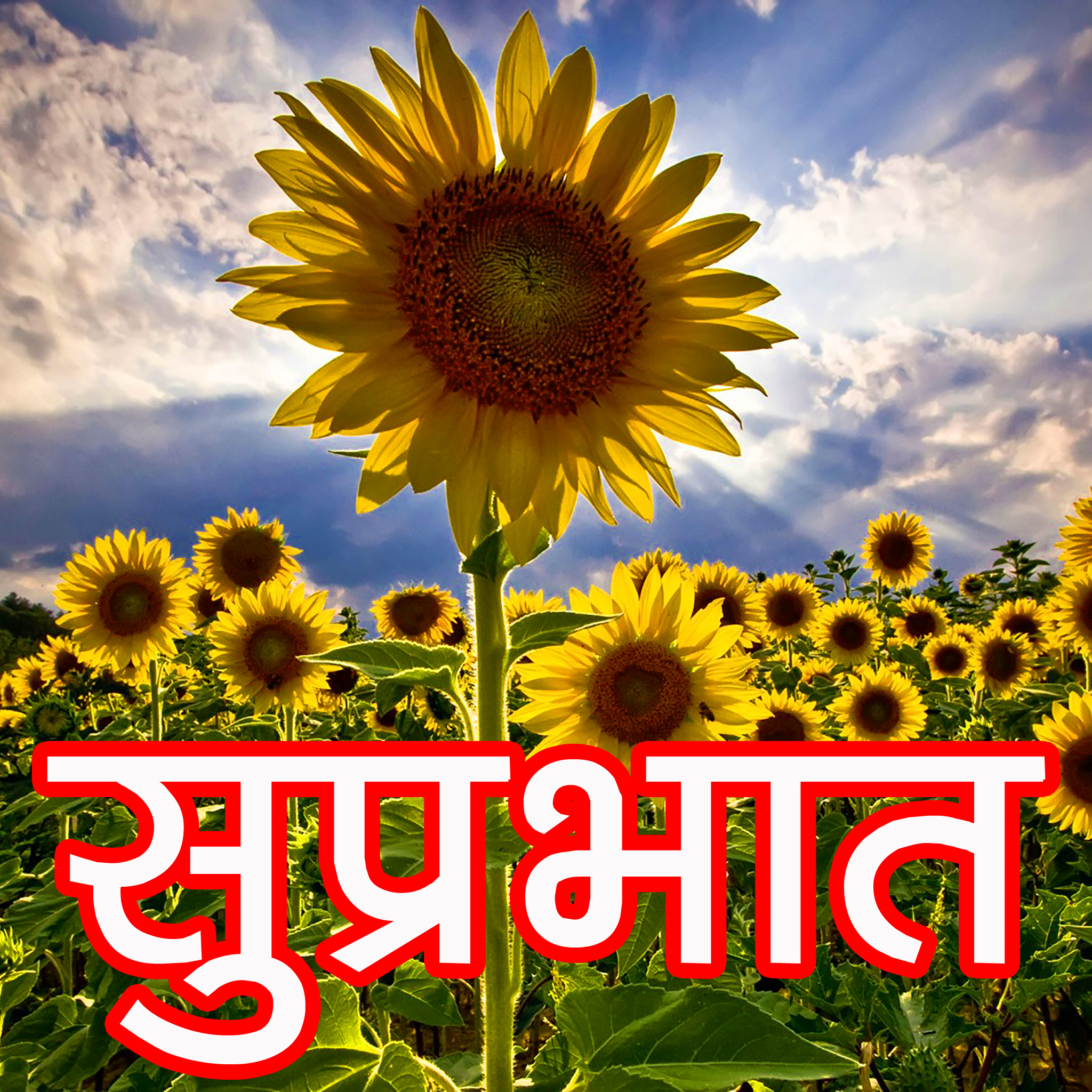 suprabhat-images-19