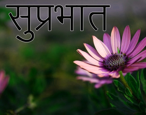 Friend-Flower-Suprabhat-Images-12