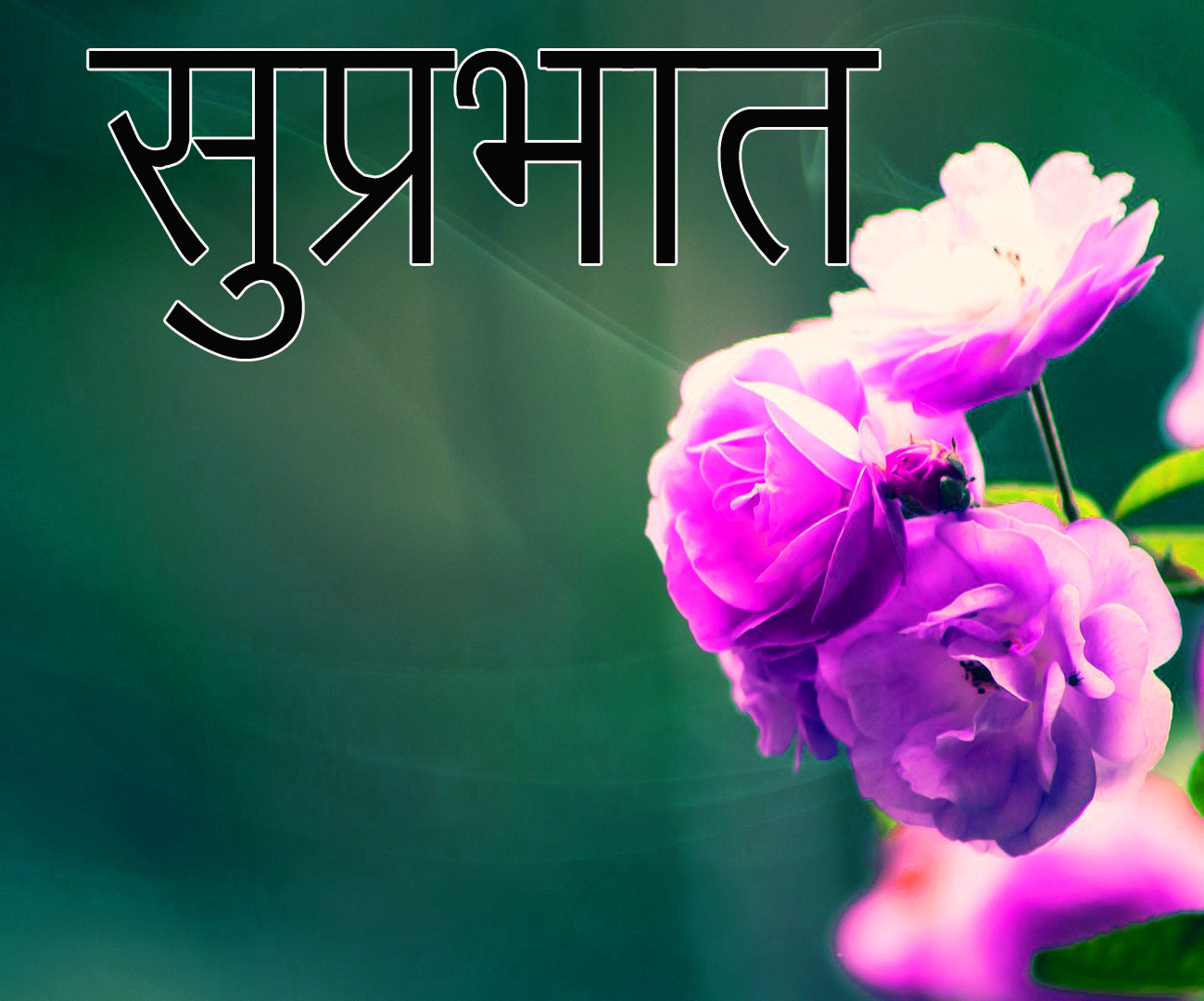 Friend-Flower-Suprabhat-Images-14