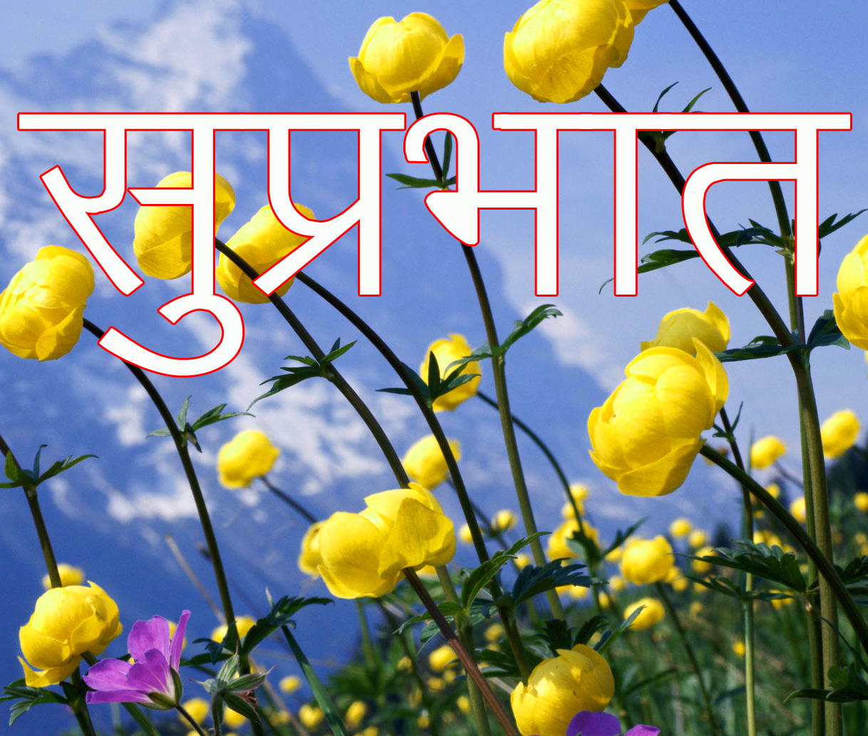 Friend-Flower-Suprabhat-Images-19