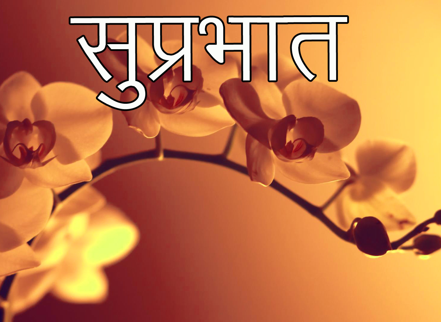 Friend-Flower-Suprabhat-Images-20