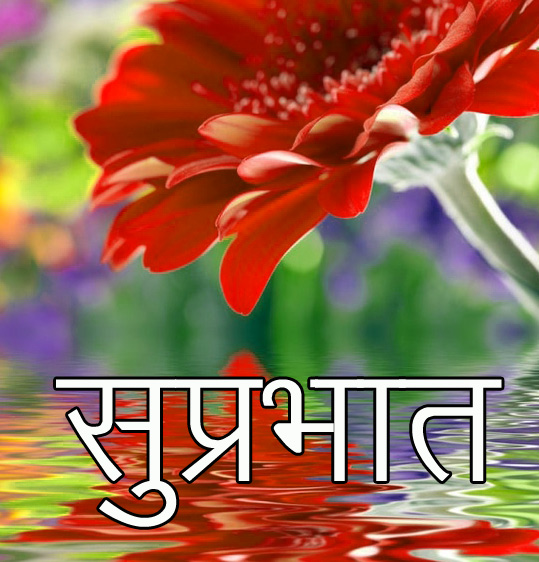 Friend-Flower-Suprabhat-Images-23