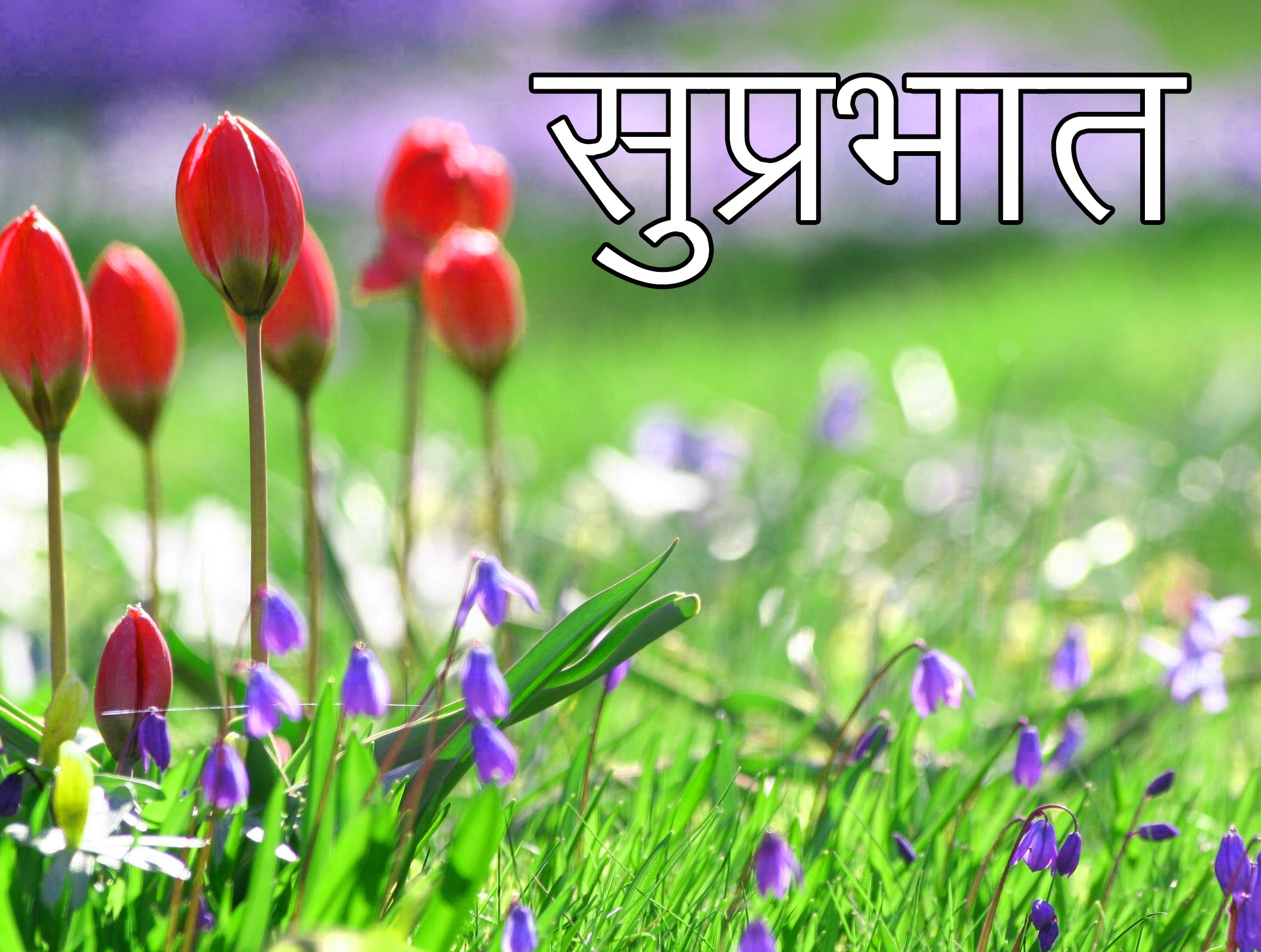 Friend-Flower-Suprabhat-Images-3