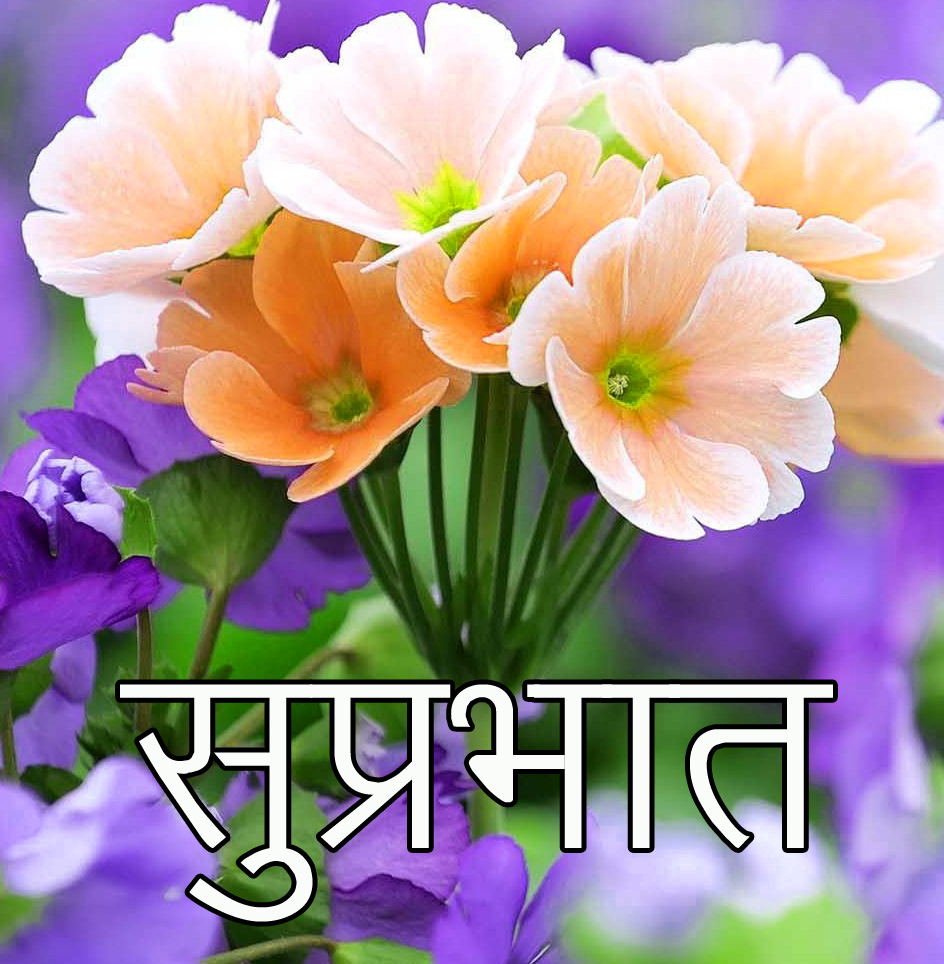 Friend-Flower-Suprabhat-Images-5