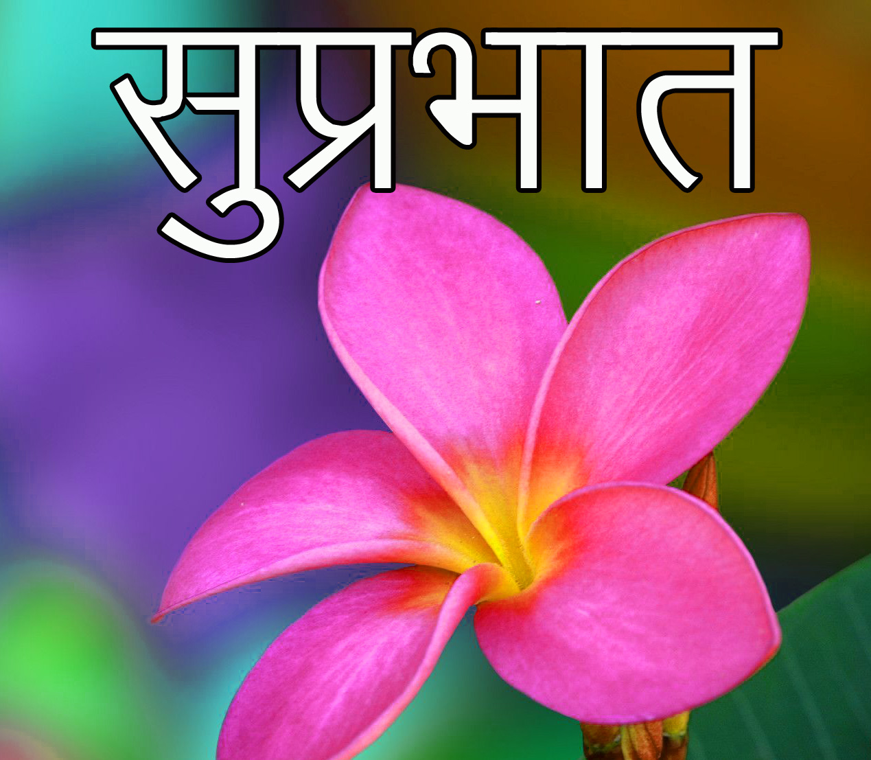 Friend-Flower-Suprabhat-Images-9